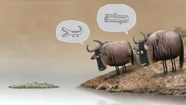 Dont Argue with Idiots Cartoon